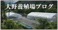 大野養殖場ブログ
